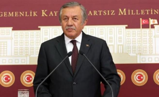'Türk milliyetçiliği kokan bir anayasayla karşılaşacağız'