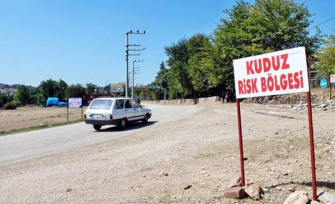 Osmaniye Valiliği: 104 kişinin kuduz vakası kapsamında tedavisi devam ediyor
