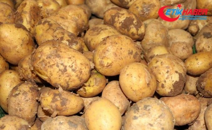 Rekabet Kurumu'ndan patates ve soğan fiyatlarına takip