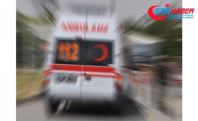 Safari minibüsü devrildi: 1 Çek turist öldü, 8 yaralı