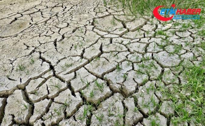 Dünya Sağlık Örgütü: İklim değişikliği 21'inci yüzyılda en büyük sağlık tehdidi olabilir