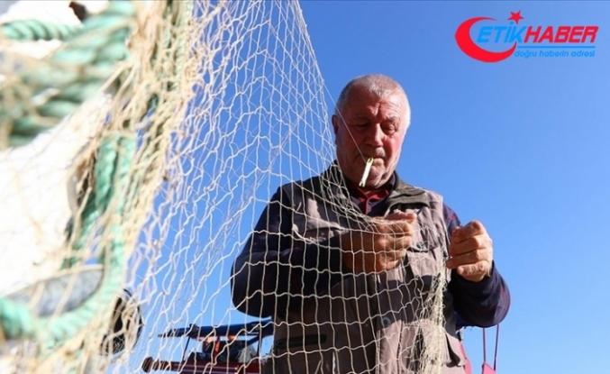 Marmara'da balıkçıların ağında palamudun yerini lüfer aldı