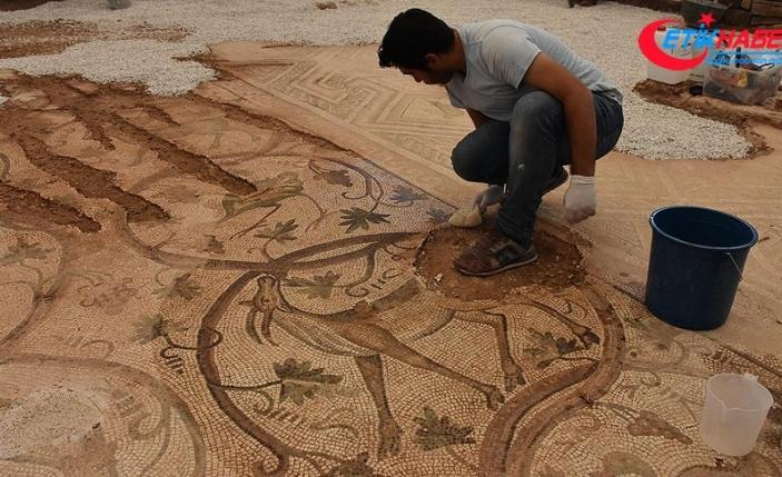 Adıyaman'da 9 yıl önce bulunan mozaik ziyarete açılacak
