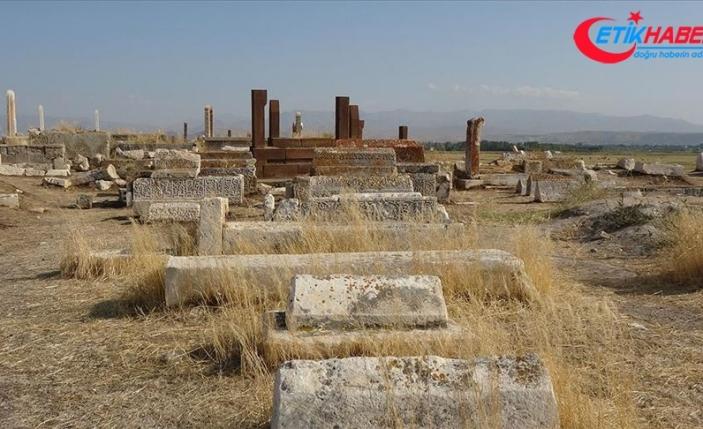 Van'da tarihi Selçuklu-Karakoyunlu Mezarlığı restore edilecek