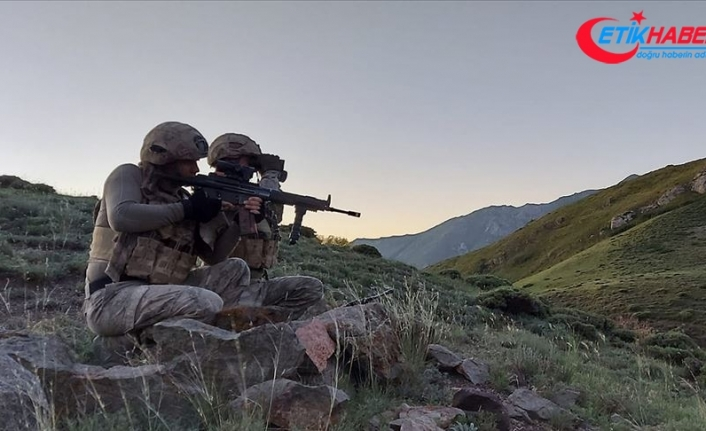 YPG/PKK'ya temmuzda ağır darbe