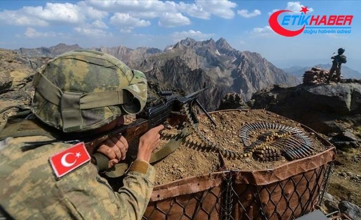 Bitlis'te Eren-11 operasyonları kapsamında 2 terörist etkisiz hale getirildi